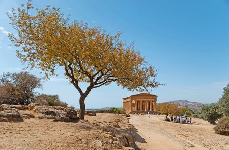 concordia: The way to the Concordia Temple, located on the dry hills of Agrigento with the scenic almond tree on the foreground, Sicily, Italy. Stock Photo
