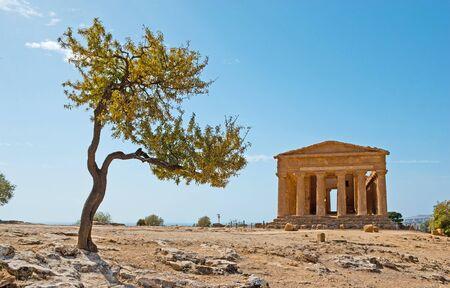 templo romano: El templo de la Concordia es uno de los mejor conservados de Valle de los Templos y entre todos los puntos de referencia existentes de la antigua Grecia, Agrigento, Sicilia, Italia.