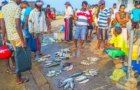 city fish market: HIKKADUWA, SRI LANKA - DECEMBER 5, 2016: The fishmongers at the fish market offers different fresh fish from the last catch, on December 5 in Hikkaduwa.
