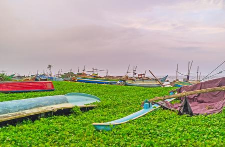 The old boats wait repair in greenery at the oceans shore, Hikkaduwa, Sri Lanka.
