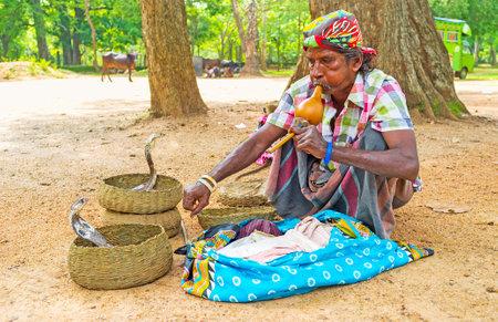 ANURADHAPURA, SRI LANKA - NOVEMBER 26, 2016: The snake charmer plays on pungi, traditional wind instrument, to hipnotyze the snakes, on November 26 in Anuradhapura. Editorial
