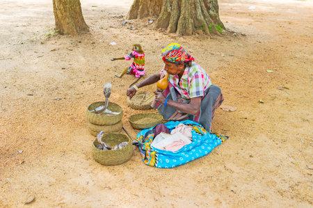 charmer: ANURADHAPURA, SRI LANKA - NOVEMBER 26, 2016: The snake charmer plays pungi, hypnotizing the cobras in baskets in Mahamevnawa Park, on November 26 in Anuradhapura.