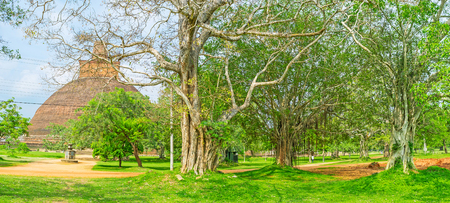 The walk in garden of Jetavana Vihara with the view on giant brick Stupa behind the lush trees, Anuradhapura, Sri Lanka. Editorial
