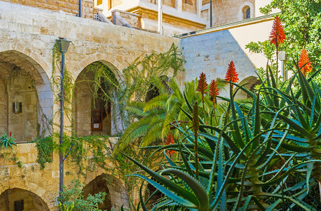 redeemer: JERUSALEM, ISRAEL - FEBRUARY 16, 2016: The tropic garden in the courtyard of Lutheran Kirche of the Redeemer, on February 16 in Jerusalem. Editorial