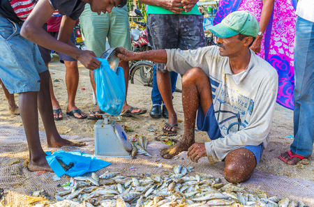 GALLE, SRI LANKA - DECEMBER 3, 2016: The fishing market on the beach is the best place to choose fresh local fish, on December 3 in Galle.