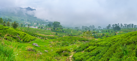 The tea region in Sri Lanka has difficult weather conditions during winter season, Haputale.