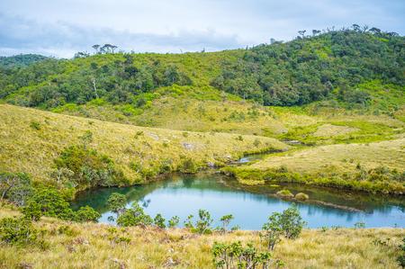 plains indian: The small backwater of Belihuloya river in the highland Horton Plains National Park, Sri Lanka