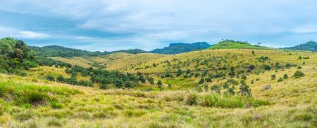 plains indian: Panoramic view on the Horton Plains vegetation landscape, Sri Lanka Stock Photo