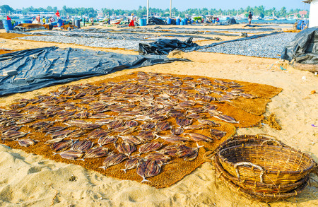 The empty baskets at the piece of sackcloth with drying fish, Negombo, Sri Lanka. Stock Photo