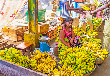 COLOMBO, SRI LANKA - DECEMBER 6, 2016: The aged banana seller at covered Fose Market in Pettah, surrounded by bunches of green and yellow bananas, on December 6 in Colombo.