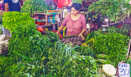 COLOMBO, SRI LANKA - DECEMBER 6, 2016: The seller at the herbs stall of Fose agricultural market among the heaps of aromatic green herbs, on December 6 in Colombo.