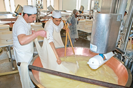 PARMA, ITALY - APRIL 24, 2012: The workers of Caseificio la Traversetolese parmesan factory take the cheese mass out of the copper vat, to put it into the mould for the high pressure processing, on April 24 in Parma.
