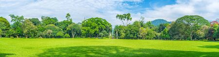 The big glade of Peradeniya Garden surrounded with trees planted by famous persons, called Memorial Trees Alley, Sri Lanka
