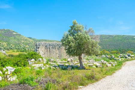former: The former big and rich city Patara nowadays lies in ruins and becomes the perfect place for walks, Turkey Stock Photo