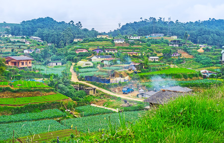 Agriculture lands of Nuwara Eliya occupy the hills and stretch along the narrow valley, Sri Lanka.