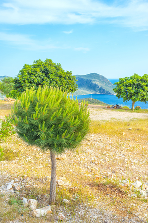 The best way to enjoy vacation is to travel along turkish riviera, making stops on viewpoints among beautiful trees, Kalkan, Turkey Stock Photo