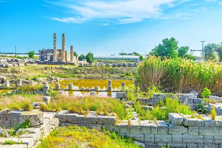 Ancient temples of  Letoon mowadays lies in ruins, flooded and overgrown with reed, Turkey