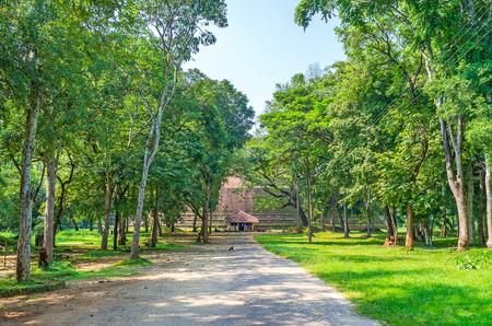The long way to Yudaganawa stupa along shady trees, Buttala, Sri Lanka Stock Photo