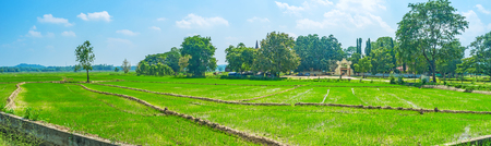 The panoramic view of green paddy fields with Dematamal Vihara on the background, Okkampitiya, Sri Lanka