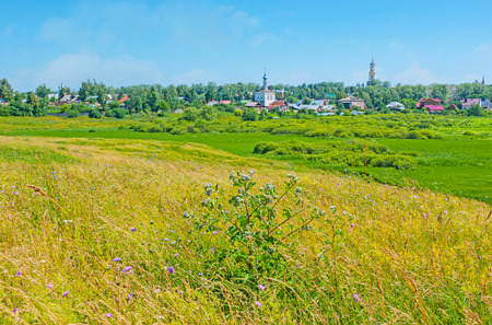 Ilinskiy meadow in Suzdal is the wide wetland with small swamps, tall grass and colored wildflowers, popular among the tourists and locals as the perfect place for picnics, Russia.