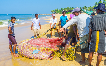 BENTOTA, SRI LANKA - DECEMBER 6, 2016: The process of traditional Sri Lankan fishing - fishermen crew have just pulled the net on shore and now need to pack out the catch, on December 6 in Bentota. Editorial