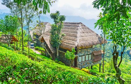 Ella resortboasts luxury tourist estate, located on the mountain slope and surrounded by tea shrubs of local plantation, Sri Lanka.