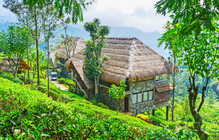 Ella resortboasts luxury tourist estate, located on the mountain slope and surrounded by tea shrubs of local plantation, Sri Lanka.
