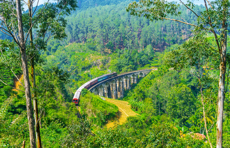 The train, running along the Nine Arches Bridge, is seen through the jungle, gadens and farms, from the mountain slope, located in valley, Demodara, Ella, Sri Lanka. Фото со стока