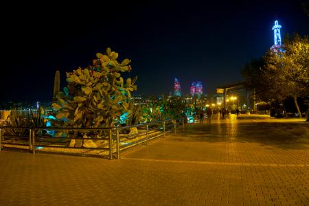 Walking along Baku Boulevard possible to enjoy beautiful exotic plants in small garden, Azerbaijan Stok Fotoğraf