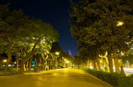 Beautiful alley leads along Neftchilar Avenue with rows of trees on both sides