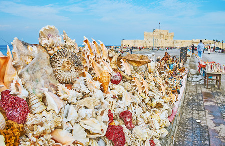 ALEXANDRIA, EGYPT - DECEMBER 17, 2017:  The giant shells, corals and dried sea creatures in market stall with  a view on Qaitbay Fort on background, on December 17 in Alexandria. Editorial