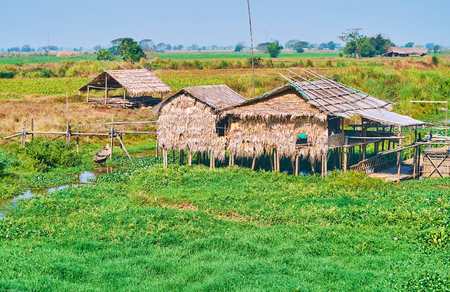 The old housing in village of Bago Region - traditional buildings of bamboo and palm leaves stand on waters of local ponds and creeks, that are used for fishing and creating of water gardens, Myanmar.