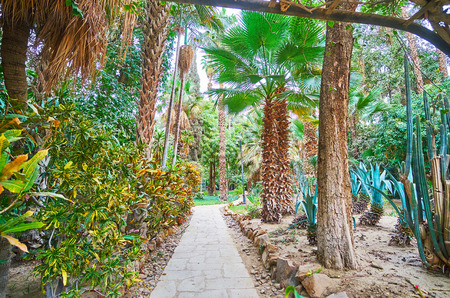 The English garden of Manial Palace boasts many varieties of tropic plants, including palm trees and cactuses, Rawdah (Roda) Island, Cairo, Egypt.