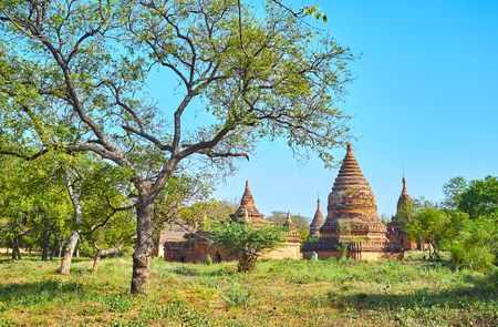 Ancient capital of Bagan Kingdom nowadays represents as numerous ruined temples overgrown with greenery among forest, Myanmar