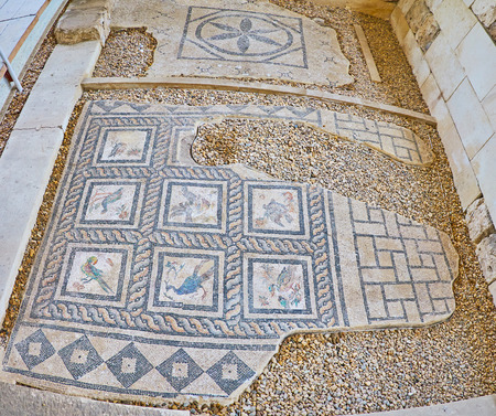 The antique Roman Villa of Birds boasts intricate floor mosaics with colorful birds and patterns, Kom Ad Dikka archaeological site, on December 18 in Alexandria.
