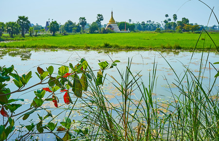 Walk along the water tank and paddy-field with a view on scenic stupa with golden cone and tall palms around it, Ava (Inwa), Myanmar.