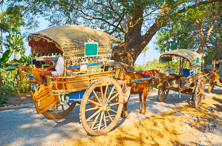 The line of horse-drawned carts, parked along the shady road at the tourist place, Ava (Inwa), Myanmar. Reklamní fotografie