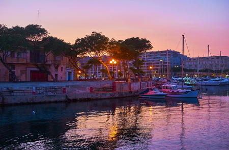 The silhouettes of old pines along the evening seaside promenade of Ta'Xbiex with a view on Msida yacht marina on the background, Malta.