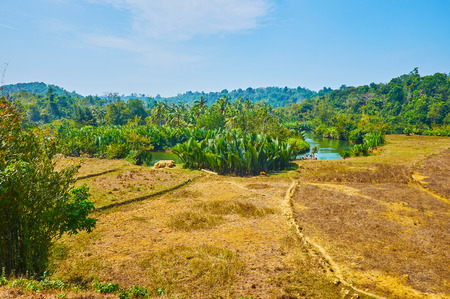 The banks of Kangy river are covered with lush mangroves, neighboring with farmlands and tropical thickets on the hills, Chaung Tha zone, Myanmar.