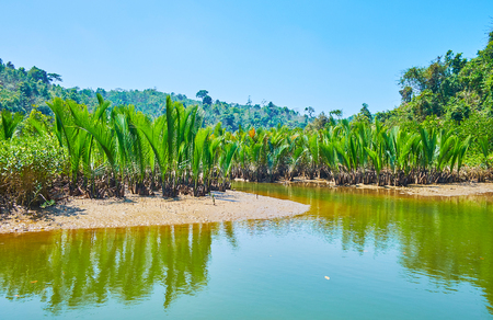 The low tide bares the shallow of Kangy river - the clay soils with mangrove forests, Chaung Tha zone, Myanmar. Stock fotó