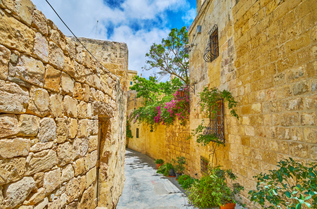 The narrow alley in old town is lined with massive stone walls of historical mansions and lush plants in pots, Rabat, Malta. Banque d'images
