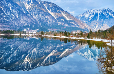 Reflection in mirror surface of Hallstatter see (lake) of the snowy bank of Obertraun village, covered with coniferous forest and Dachstein Alps on the background, Salzkammergut, Austria.
