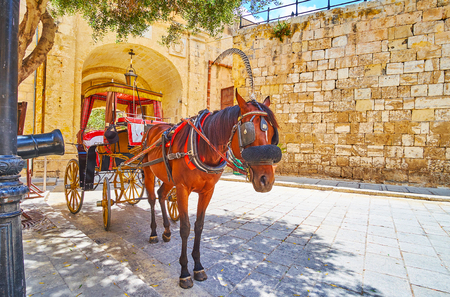 The city tour in horse-drawn carriage (Karozzin) is the best choice to enjoy medieval Mdina, feel its atmosphere, slowly riding its narrow alleys, Malta. 免版税图像