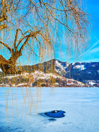Enjoy Alpine winter landscape walking by fozen Zeller see lake with ice hole amid the snow crust and weeping willow tree on the foreground, Zell am See, Austria Stock Photo