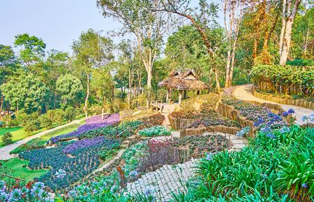 The slope of Doi Chang Moob mountain range is covered with flower beds, rhododendrons and rare plant species of Mae Fah Luang Arboretum, Chiang Rai, Thailand