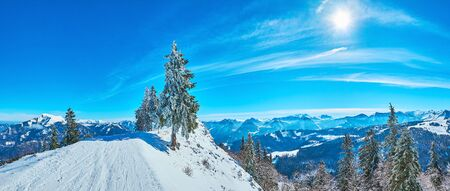 Winter panorama of Inner Salzkammergut Alps, seen behind the snowbound peak of Zwolferhorn mount, covered with groomed pistes and spruce trees in ice glaze, St Gilgen, Salzkammergut, Austria