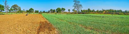 Panorama of the plowed soil on the field and the farmer, working with tiller on background, Hum Pho, Taunggyi, Myanmar. Standard-Bild