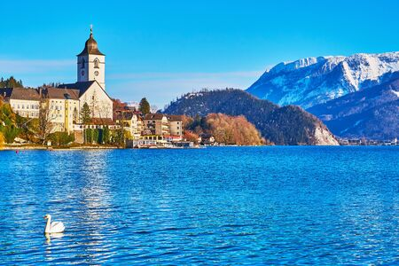 The white swan on Wolfgangsee lake, lined with Salzkammergut mountain range of  Northern Limestone Alps and white Pilgrimage Church, St Wolfgang, Austria. Reklamní fotografie