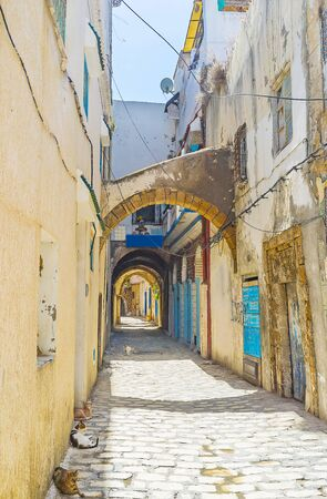 Visit medieval Medina of Bizerte, walk its shabby streets with extant arched passes, small houses, narrow alleys and numerous cats, walking and lying in shade, Tunisia
