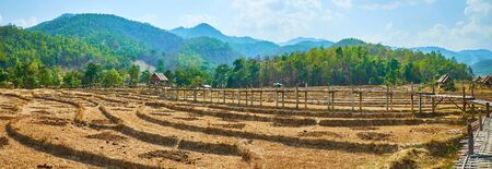 Panorama of terrace paddy fields and Boon Ko Ku So bamboo bridge, surrounded by green Shan hills, Pai suburb, Thailand Zdjęcie Seryjne - 130155116